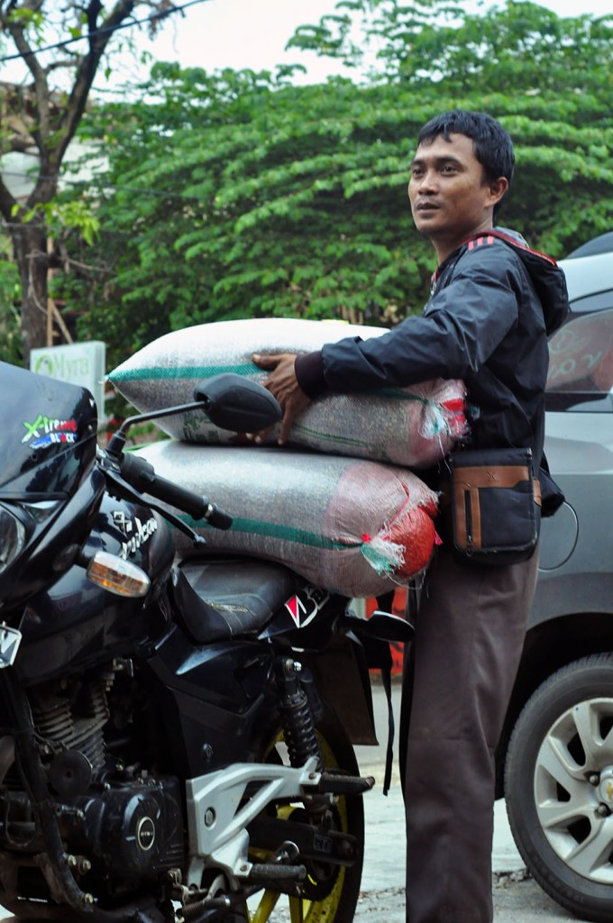 Jumpono tengah menurunkan karung green bean arabika Cibulao di halaman Rumah Kopi Ranin